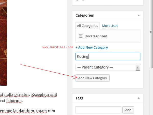 118 tambah category wordpress